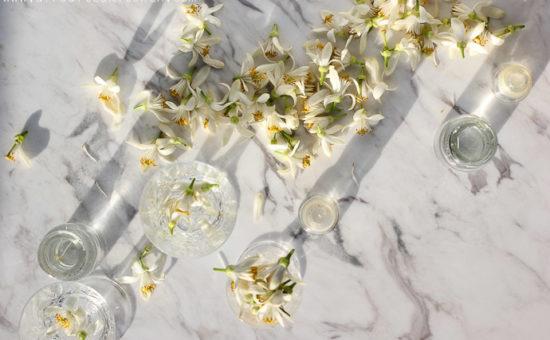 How To Make Orange Blossom Water (Anthonero)