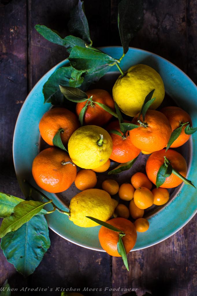 Foodsaver Orange Duck Citrus-0284