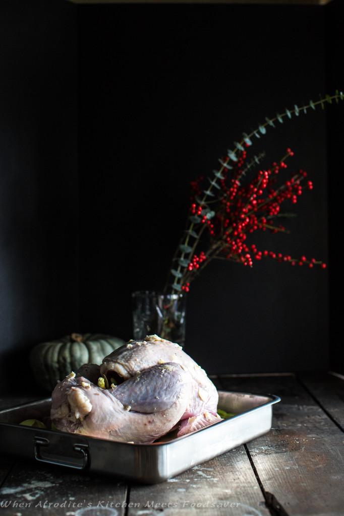 Perfect Turkey-9332
